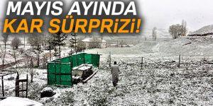 Erzurum'da Mayıs ayında kar yağdı