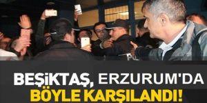 Beşiktaş Kafilesine Erzurum'da Çiçekli Karşılama