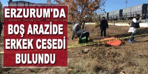 Erzurum'da boş arazide erkek cesedi bulundu