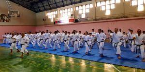 Karateciler Dan Seminerinde ter döktü