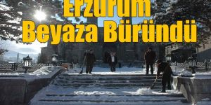 Doğu Anadolu kar altında