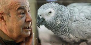 Mazhar Alanson'dan papağan çıkışı