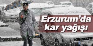 Erzurum ve Erzincan'da Kar Yağışı Bekleniliyor