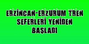 Erzincan-Erzurum tren seferleri yeniden başladı