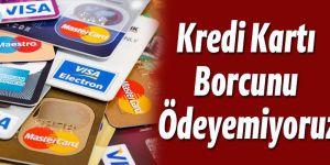 Kredi kartı borcunu ödeyemeyenlerin sayısı yüzde 14 arttı!