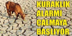 Erzurum, Ağrı, Kars ve Iğdır için kuraklık alarmı
