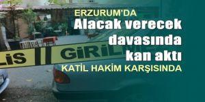 Erzurum'da keser cinayeti davası başladı