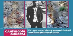 Erzurum'da o caniye ödül gibi ceza