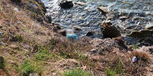 Bodrum'da korkunç ölüm