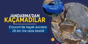 Erzurum'da kaçak avcılara 29 bin lira ceza kesildi