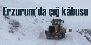 Erzurum'da çığın faciası: 1 işçi kurtarılmayı bekliyor