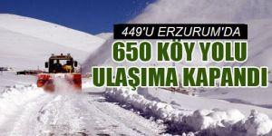 Doğu Anadolu'daki 7 ilde 650  köy ve mahalle yolunda ulaşım sağlanamıyor