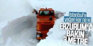 Erzurum yoğun kar yağışı altında