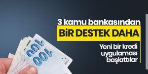 3 kamu bankasından bir destek daha!