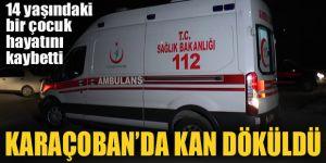 Karaçoban'da çocukların oyununda kan döküldü