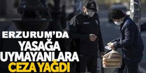 Erzurum'da 125 kişiye 168 bin 582 lira ceza