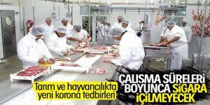 Tarım ve hayvancılıkta korona tedbirleri
