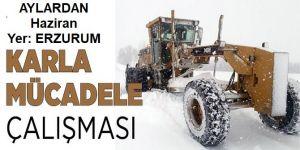 Erzurum'da ekiplerin karla mücadele çalışması sürüyor