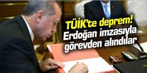 TÜİK'te deprem! Erdoğan imzasıyla görevden alındılar