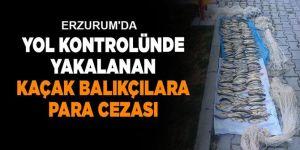 Erzurum'da kaçak balık avlayanlar yakaylandı