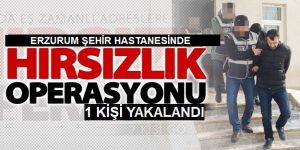 Erzurum'da suçüstü yakalanan zanlı tutuklandı