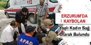 Kaybolan yaşlı kadın AFAD ve jandarma ekiplerince bulundu