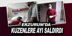 Erzurum'da Hayvanlarını otlatan kuzenlere ayı saldırdı