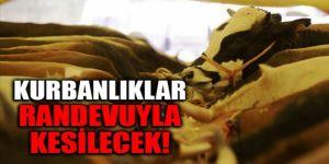 """Erzurum'da kurbanlıklar koronavirüs tedbirleri kapsamında """"randevu"""" ile kesilecek"""