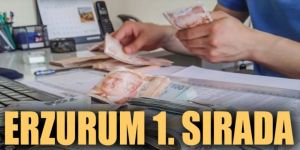 Erzurum bölgede 1, ülkede 25'inci sırada