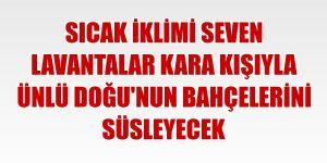 Erzurum ve Erzincan için kuvvetli rüzgar uyarası