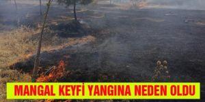 Erzurum'da mangal keyfi yangına neden oldu