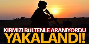 Kırmızı bültenle aranan El Kaide bağlantılı terörist yakalandı