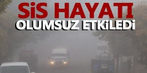 Doğu Anadolu'da kar ve sis yaşamı olumsuz etkiledi