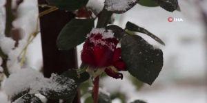 Oltu'da karla gelen kartpostallık görüntüler