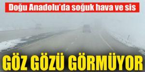 Doğu Anadolu'da soğuk hava ve sis etkili oldu