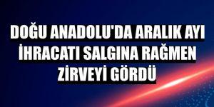 Doğu Anadolu'da aralık ayı ihracatı salgına rağmen zirveyi gördü