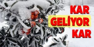 Doğu Anadolu'daki 3 ilde kar yağışı etkisini sürdürecek