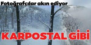 Doğu Anadolu'da yaşamı güçleştiren kar yağışı ve soğuk hava doğaya eşsiz güzellikler kazandırdı