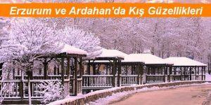 Erzurum ile Ardahan'da kış çilesi ve doğal güzellikler bir arada