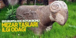 Koç-koyun şeklindeki mezar taşları dikkat çekiyor
