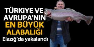 Türkiye ve Avrupa'nın en büyük alabalığı Elazığ'da olta ile yakalandı