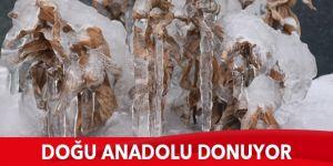 Doğu Anadolu'da dondurucu soğuklar martta da etkisini sürdürüyor