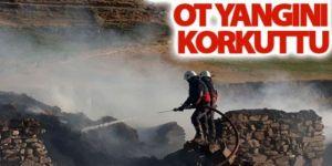 Erzurum'da ot yangını
