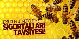 Arılarınızı sigortalattırarak güvende olun!