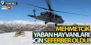 Tunceli'de yaban hayvanlarına helikopterle yem desteği
