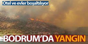 Bodrum'daki yangın kısa sürede büyüdü, mahallenin boşaltılması için anons yapılıyor