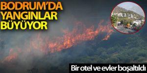 Bodrum'da yangınlar büyüyor, bazı ev ve oteller tahliye ediliyor