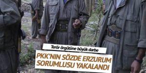 Sözde Erzurum Eyaleti sorumlusu yakalandı