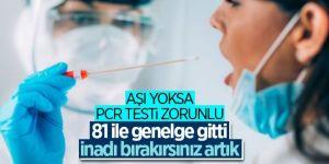 İçişleri Bakanlığı'ndan PCR testi konulu yeni genelge