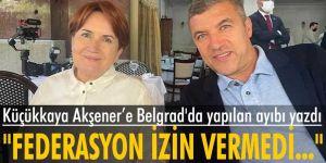 Küçükkaya, İYİ Parti Genel Başkanı Meral Akşener'e Belgrad'da yapılan ayıbı yazdı
